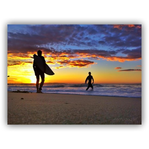 sutto007:  Yet another awesome sunrise down at North Cronulla Beach  _Year 5: Day 141_  #iPhoneography #Sunrise #Cronulla  #Australia #Sydney #VisitNSW #TheRealShire #SeeAustralia #nswgetawaysy #seesydney #AMPt_POTD #snapseed  (at North Cronulla Beach)