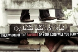 islamographic:  Then which of the Favours of your Lord will you deny? - www.lionofAllah.com