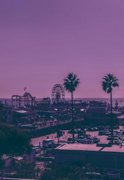 Los Angeles purple california Santa Monica Pier photographers on tumblr original photographers telescopical