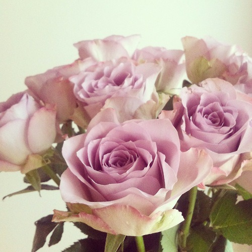 madelonbosmann:  Vintage roses | via Tumblr on We Heart It - http://weheartit.com/entry/55261173/via/MadelonBosman