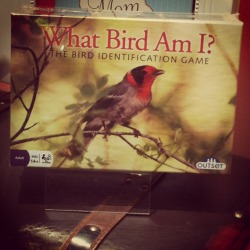 What Bird Am I?