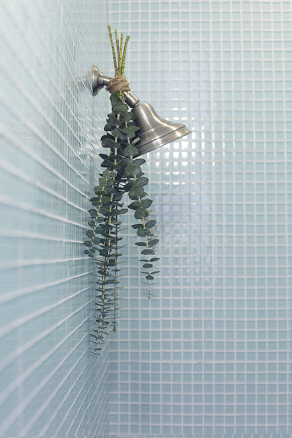 "off-grid-inspiration:  softmints:  ""Hang the eucalyptus upside down by tying it to your shower head with twine. When you run your shower, the steam will rise up towards the eucalyptus, filling your bathroom with the most refreshing, relaxing scent. Plus, the added greens are lovely on the eyes. You'll definitely feel a little closer to nature."""