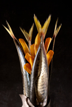 Fish and Chips by award winning food photographer Hilary Moore.