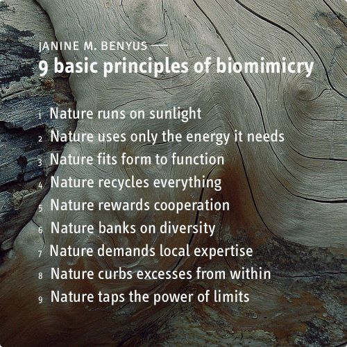 stoweboyd:   Janine Benyus: 9 Basic Principles of Biomimicry Nature runs on sunlight. Nature uses only the energy it needs. Nature fits form to function. Nature recycles everything. Nature rewards cooperation. Nature banks on diversity. Nature demands local expertise. Nature curbs excesses from within. Nature taps the power of limits.   (via fuckyeahpermaculture)