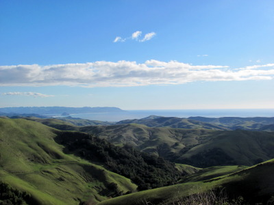 Springtime on California's Central Coast Taken by me, overlooking Morro Bay, CA