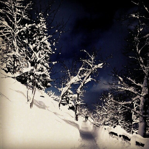 Again, another edit on random photo that I took a few days bck. #snow #snowing #winter in #leysin #Switzerland #Suisse #swiss #cold #edit #view