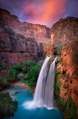 matsvri:  Havasu Falls ✕ by Inge Johnsson