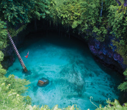 nikolawashere:  Tosua Pool, Samoa Bucket list!