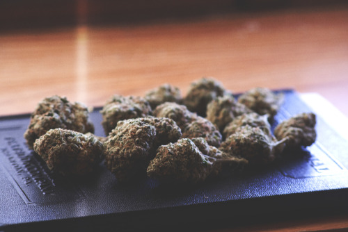 personalstache:  happy sour diesel nugs