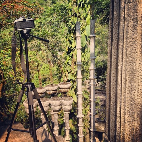 #xilitla #pentax #avitar #tripod #travel #garden #analogue #photographer #love #instagood #me #tbt #cute #photooftheday #instamood #beautiful #picoftheday #igers #instadaily #iphonesia #follow #tweegram #happy #summer #instagramhub #cartayen #followback #mexico  (en Xilitla)