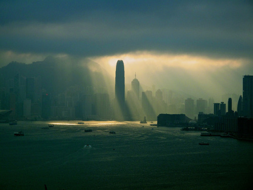 savvydarling:  Black rain in hk by claunora on Flickr.
