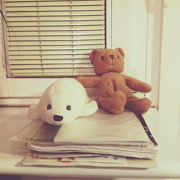 maddinka:  Our sweet little friends #ikea  #ilovetoys  Oh l'ours marron c' est le doudou de mon frere … ikea