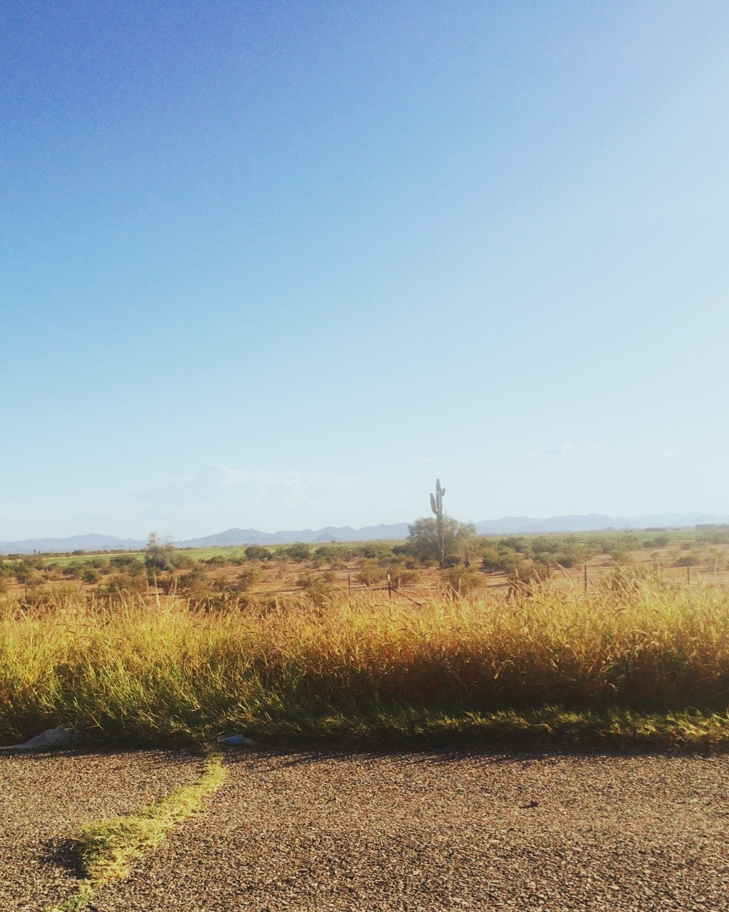 Arizona. Traffic. Road side.