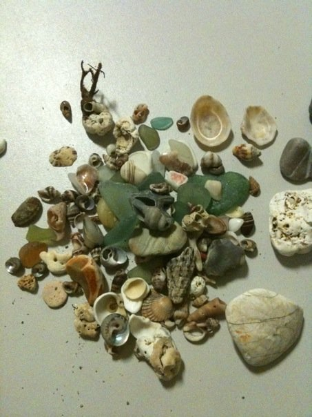 treasures from the sea Perpignan FR, 2010