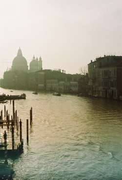 foxmouth:  a picture i took in Venice