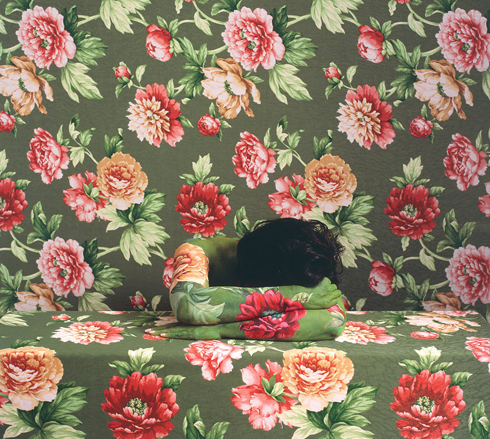 C is for Camouflage To disguise or conceal. Dreaming Rose, 2009, by Cecilia Paredes