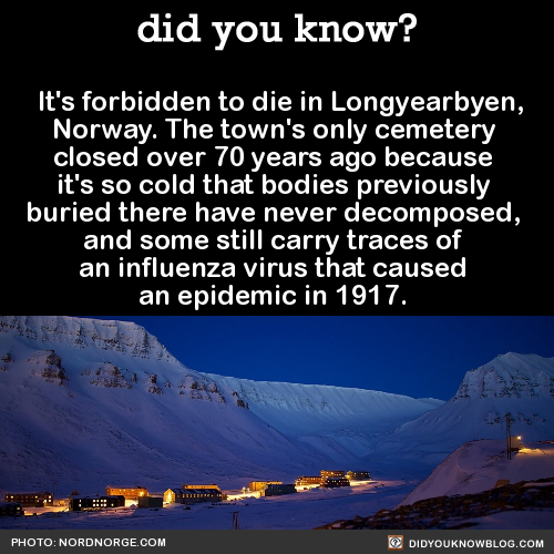 its-forbidden-to-die-in-longyearbyen-norway-the