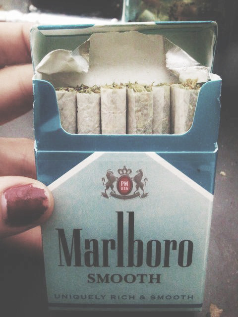 highhh:  bryttany-xo:  Need this now.  Weed>cigs