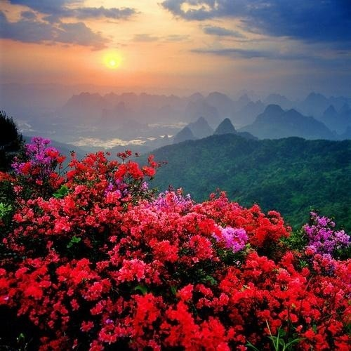travel-lusting:  China