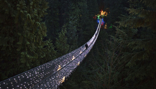 Capilano Suspension Bridge decorated in Christmas lights in North Vancouver, British Columbia, Canada.The bridge, built in 1889, stretches 135 meters across and 70 meters above the Capilano River