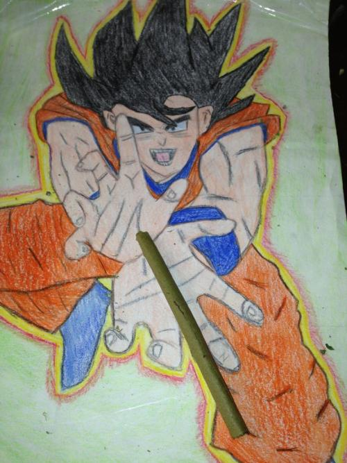Kamehameha blunt A friend of mine drew this in 5th grade.  It's covered in a thin laminate, and is now used for pretty much nothing but rolling blunts.