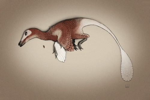 "scinerds:  National Geographic: A Velociraptor Without Feathers Isn't a Velociraptor by Brian Switek  Jurassic Park is the greatest dinosaur movie of all time. Aside from being an exceptionally entertaining adventure, the film introduced audiences to dinosaurs that had never been seen before – hybrids of new science and bleeding-edge special effects techniques. The active, alert, and clever dinosaurs that paleontologists had recently pieced together were revived by way of exquisite puppetry and computer imagery, instantly replacing the old images of dinosaurs as swamp-dwelling dullards. Despite the various scientific nitpicks and some artistic license overreach – let's not talk about the ""Spitter"" -  Jurassic Park showed how science and cinema could collaborate to create something truly majestic. That's why it's so disappointing to hear the the next Jurassic Park sequel is going to turn its back on a critical aspect of dinosaur lives. In Jurassic Park 4, the film's director has stated, there will be no feathery dinosaurs.  Read the full post on National Geographic.  I talked a bit about this yesterday in another post. Feathers are okay, they don't bite… But the animal its on does!"