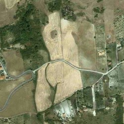spotted a field on Google Maps that's shaped just like a BUM.  A field on google maps shaped like a bum.. Lol. The tiny village of Catalani in rural Sicily.