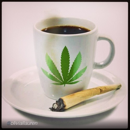 Best bet that's #medicated #coffee(; what a way to get the day #blazing! #webudyou #ibudyou #iby #thepersonalstash #wakenbake #high