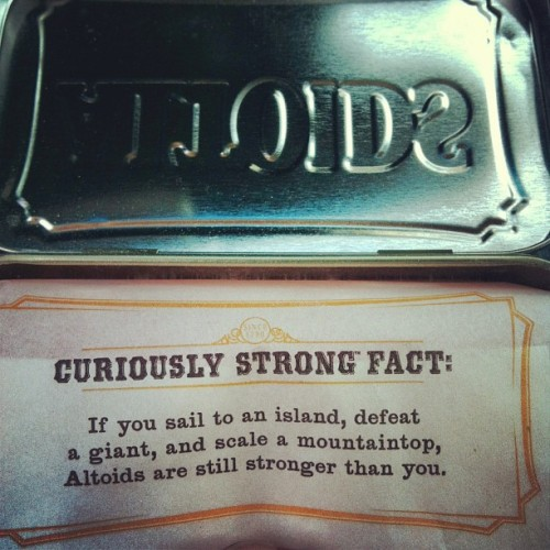 Apparently chuck Norris is one of the ingredients in altoids now.