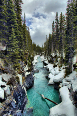hesito:  Vermilion River, Kootenay National Park (by jspierry)