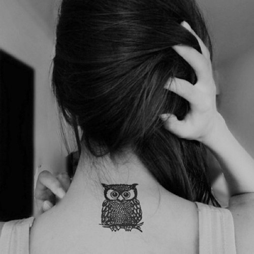 orleny:  corujas tumblr tatuagens - Pesquisa Google on We Heart It - http://weheartit.com/entry/61762141/via/orleny   Hearted from: https://www.google.com.br/blank.html