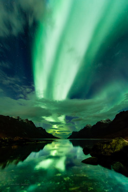 ethereo:  Dual Aurora highway above Ersfjorden, nothern Norway. (by mirrormatch)