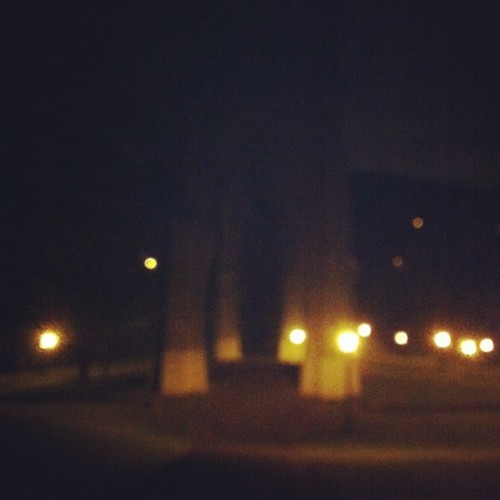 Night arches. #pdxnights #pdx #bridges (at Cathedral Park)