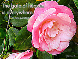 The gate of Heaven is everywhere. ~ Thomas Merton on Flickr.