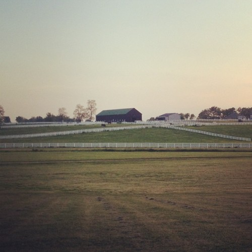 Sunset at the #kentucky #horse park! #glimpse