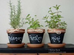 familyfocusblog:  (via The Robin's Nest: Chalkboard Clay Pots…)