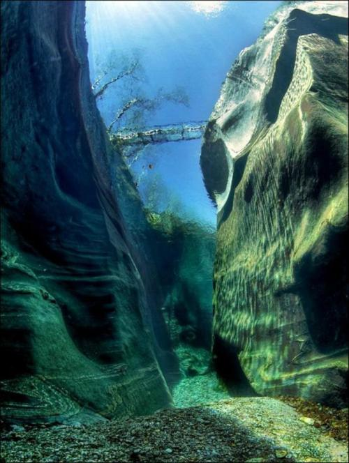 earth-phenomenon:  The Verzasca River in Switzerland is so clean, you can see all the way down to the 50ft deep riverbed.