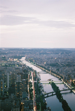 victorielle:  thoughtsonfire:  Paris (by kristina micova)