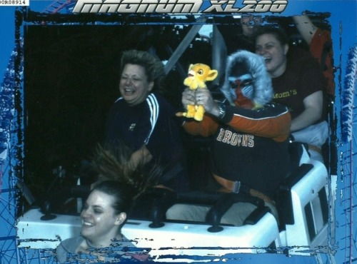 There's no point in ever taking another roller coaster picture again, because this is the best.