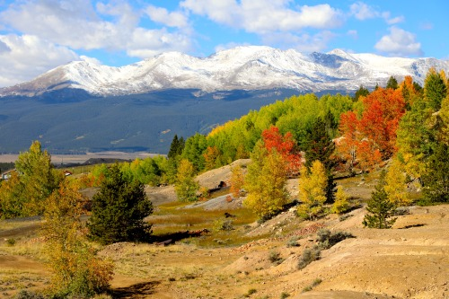 Fall and winter mingle on the outskirts of Leadville, Colorado.