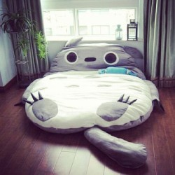This is fantastic #apartment #bedroom #totoro #adorable