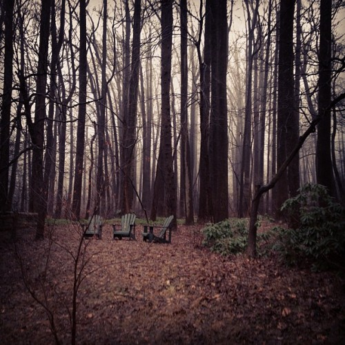 Gloomy day at the Parducci's #weather #rain #outside #outdoors #chairs #fog #lonely #cold