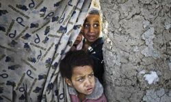 "vandanachomskyhicks:  Internally displaced Afghan children wait for winter relief assistance from the UN refugee agency at a camp in Kabul. Photograph: Musadeq Sadeq/AP UN appeals for Afghan refugee aid as harsh winter proves deadly The deadly struggle with Afghanistan's bitter winter is only likely to get worse in the coming years, a top UN official warned, as he called for more aid money to be dedicated to emergency relief. At least two children are already reported to have died from the cold this year in Kabul's makeshift refugee camps, crammed with tens of thousands of Afghans who have fled violence or desperate poverty, despite a drive by aid groups to prepare for sub-zero temperatures. ""Each family already has two or three people who are sick,"" said 77-year-old Shah Ghasi, who has squatted in the Bagh Dawood camp on the outskirts of Kabul for nearly a decade. ""We only have hot water to try and keep warm – no stoves, no fuel."" Last year the bitterest winter in decades caught the country by surprise, and more than 100 children died in the cramped and squalid camps around Kabul. This year there has been a more organised effort to get food, blankets, fuel and medicine to people who sometimes have little more than a sheet of plastic to shelter them from snow and ice.(more…)  Winter cold is setting in in Afghanistan - not good news for IDPs and refugees without access to heat and other services."