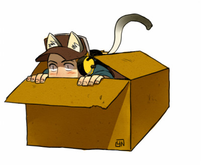 nicca11y:  lossotool:  nicca11y:  as you see,cats love boxes.   hehe  be careful,mimi!scout should be very very angry.