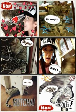 ygladies:  Dara's Celebration Tweets for Dadoong's B-Day  #DA2OONGIE @mblaqcd good morning everyone!!! :) its so hard to take dadoongie's picture and big doongie is still sleeping.. Hahaha — Sandara Park (@krungy21) May 18, 2013   #DA2OONGIE @mblaqcd just one picture doong a… Just one pic!!! Omg… T.T twitter.com/krungy21/statu… — Sandara Park (@krungy21) May 19, 2013