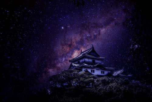 cedorsey:  Dreamy Nights In JapanPhoto Credit: (Max Redörksen)