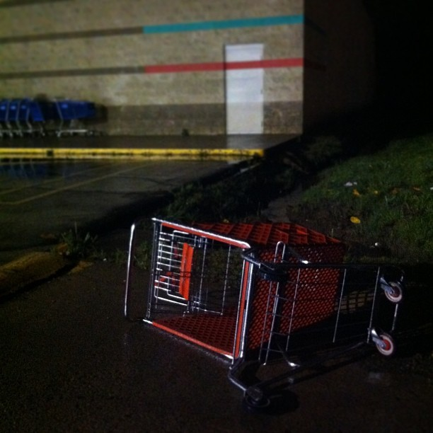 It was a valiant attempt. #shoppingcart #ivefallenandicantgetup #help