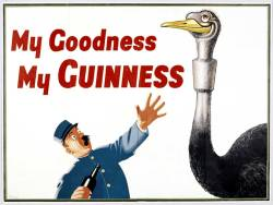 rogerwilkerson:  My Goodness My Guinness