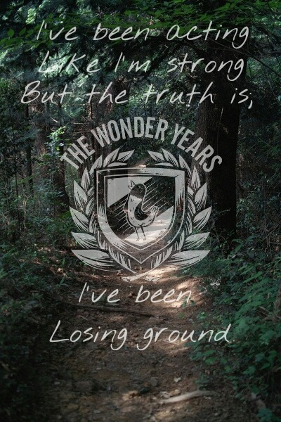 fl0w3r-b0mb:  The Wonder Years - Dismantling Summer