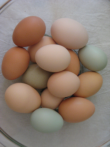 The downside to keeping chickens that lay such beautiful eggs? You get really lazy when it comes time to dye them. Happy Easter everyone!
